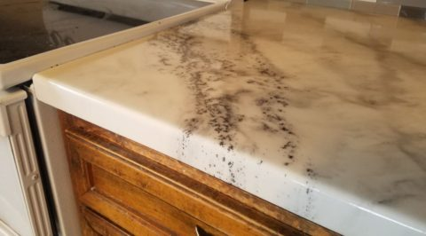 epoxy-countertops-resurfacing-better-than-quartz